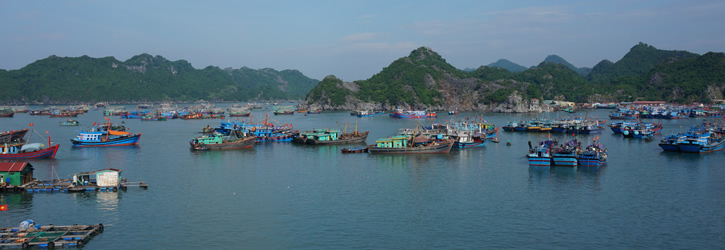 Cat ba Island Tour - Cat Ba Inland Hotels - Cat Ba Island Restaurants